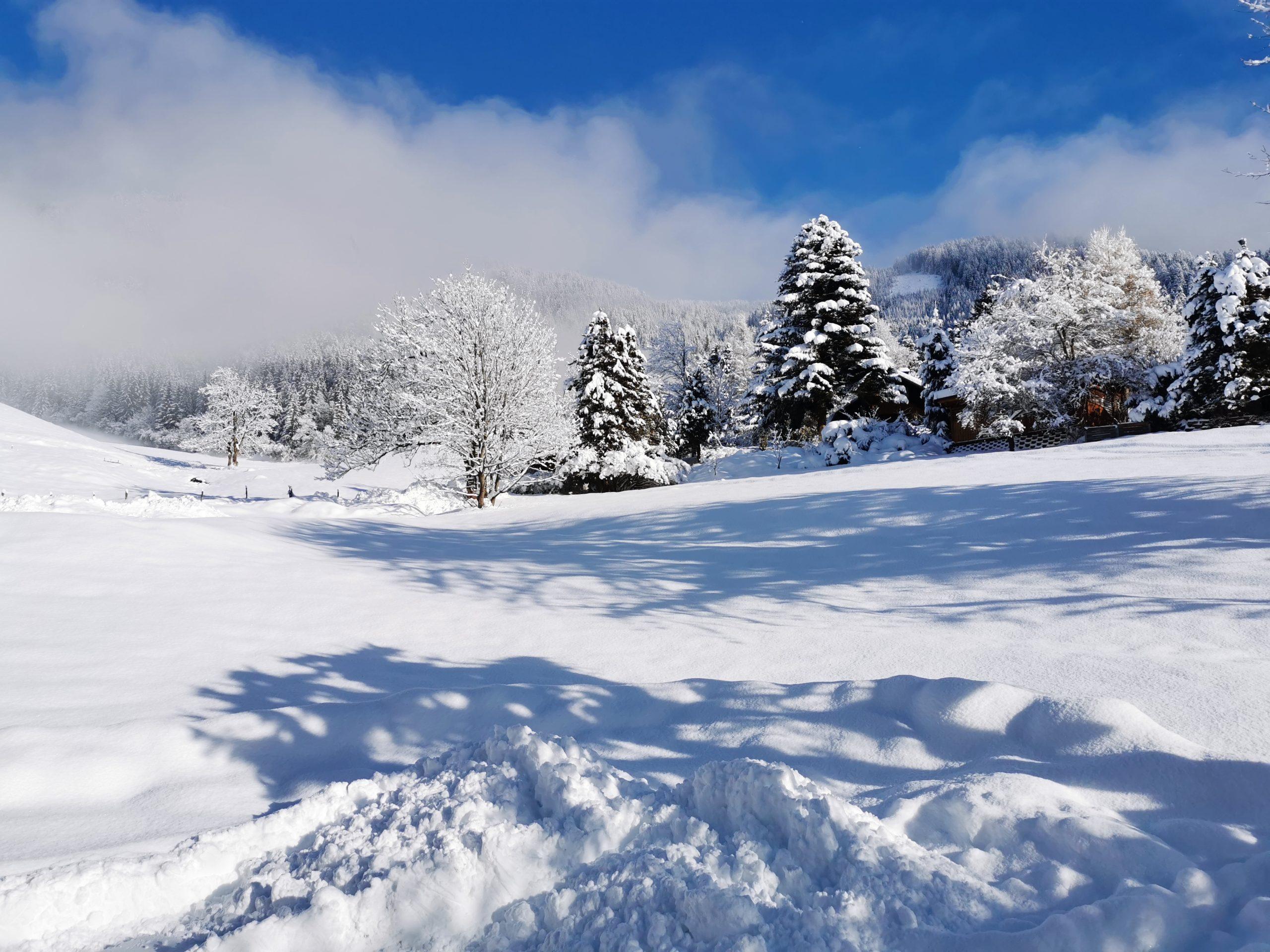 Winterlandschaft in Sonnleiten